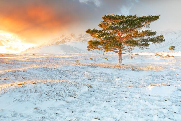 campo imperatore winter