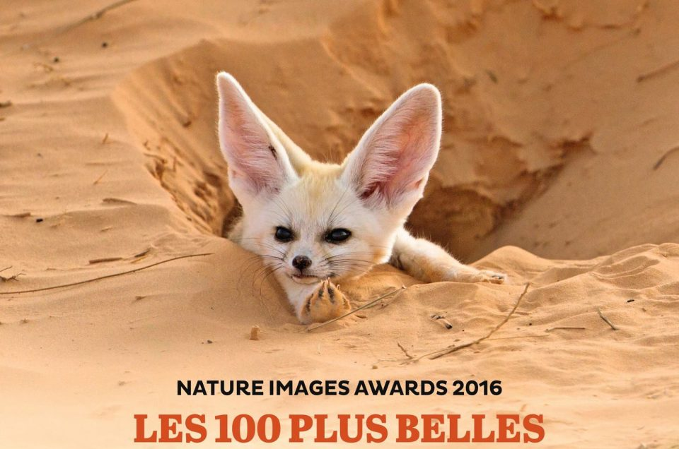 NATURE IMAGES AWARDS 2016